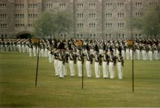 WP Parade